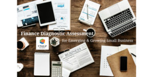Finance Diagnostic Assessment for Emerging & Growing Small Business