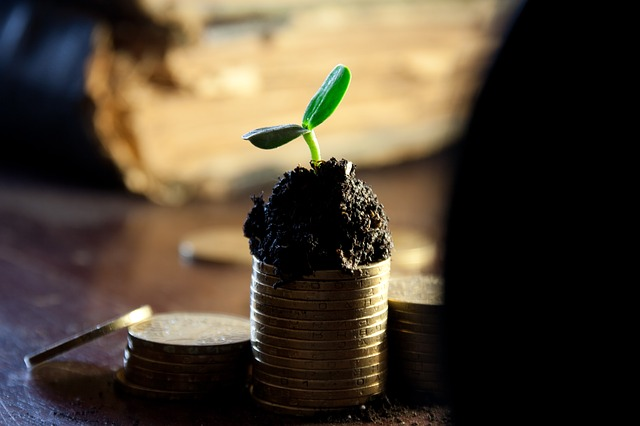 , Emerging & Growing Small Business