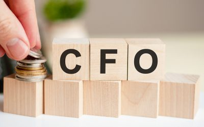 Who Needs Fractional CFO Services?